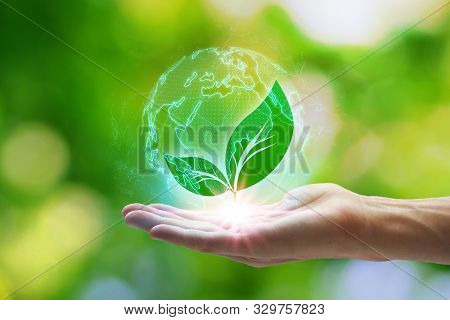 Hand Holding With Leaf Icons In The Earth Network Connection On Nature Background, Technology Ecolog