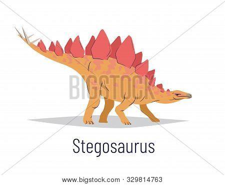 Stegosaurus. Ornithischian Dinosaur. Colorful Vector Illustration Of Prehistoric Creature Stegosauru
