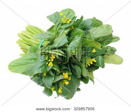 Organic Brassicaceae Bunch And Flower Isolated On White