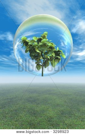 Leafy Plant In Glass Bubble