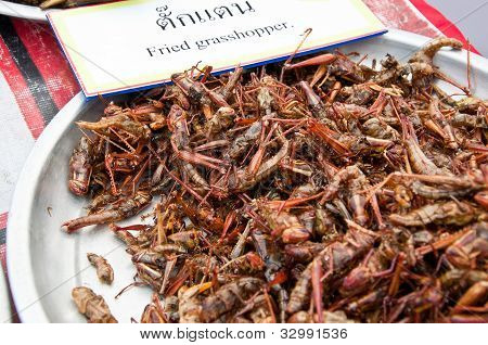 Fried grasshopper with in aluminum salver for sale in market, Thailand poster