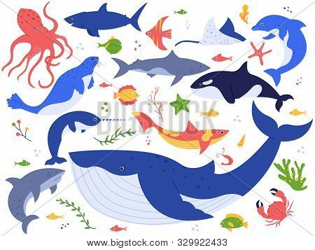 Ocean Animals. Cute Fish, Orca, Shark And Blue Whale, Marine Animals And Sea Creatures Illustration