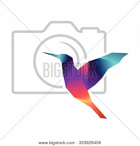 Abstract Humming Bird And Photo Camera, Vector Graphic Design Element