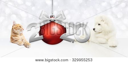 2020 Happy New Year Number Text, Dog Puppy And Cat Pet With Red Christmas Ball And Silver Ribbon Bow