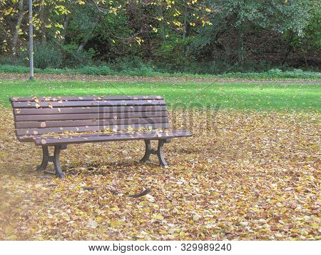 Der Schönste Herbst In Deutschland Und Auf Einem Stuhl  The Most Beautiful Autumn In Germany And Sit