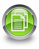 documents icon on glossy green round button poster