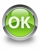 OK icon on glossy green round button poster