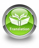 translation icon on glossy green round button poster