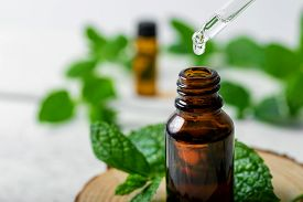 Mint Essential Oil Drop Falling From Dropper Into The Bottle