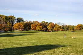 A Blond Woman Walking Her Dog In A Park With Beautiful Fall Colors