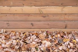 Dry Fallen Autumn Leaves Against A New Wooden Fence