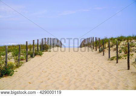 Path Access In Sand Dune Beach In Southwest Coast In France