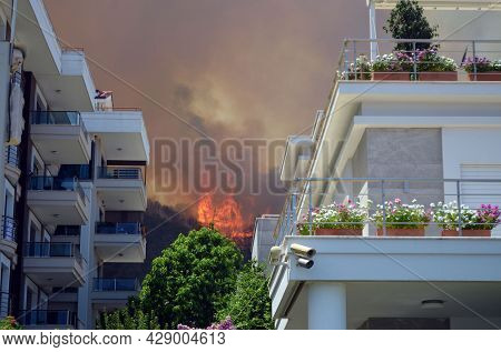 Wildfire in the forest near a resort town (Marmaris, Turkey. August 29,2021)