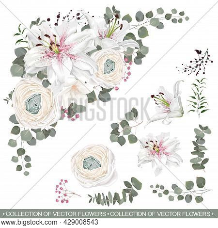Triangular Floral Vector Composition. White Ranunculus, Japanese Buttercup, White Lilies, Eucalyptus