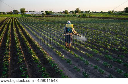 A Worker With A Sprayer Works In The Field. Use Of Chemicals For Protection Of Cultivated Plants Fro