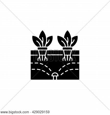 Aeroponics Black Glyph Icon. Grow Plants With Air, Water And Nutrients. Soilless Roots. Indoor Plant