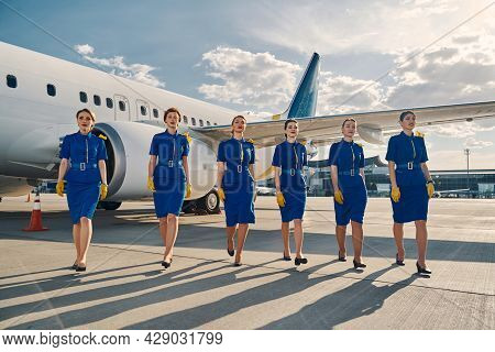 Six Attractive Female Flight Attendants Going Ahead