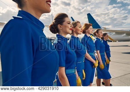 Group Of Young Attractive Stewardesses Gazing Into The Distance