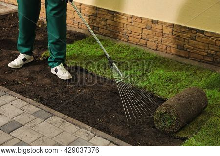 Worker Leveling Soil Before Laying Grass Sod At Backyard, Closeup