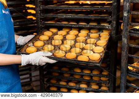 Girl In Uniform Working With Fresh Bakery. Baking Profession Workplace.