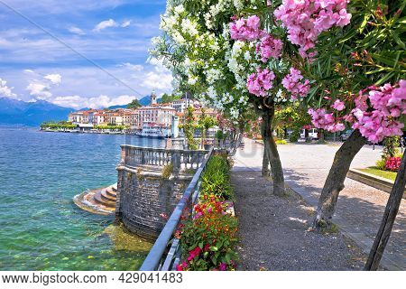 Town Of Belaggio Lungolago Europa Famous Flower Lakefront Walkway, Como Lake, Lombardy Region Of Ita