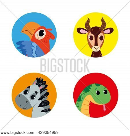 Animal Avatar In Round Multi-colored Windows. Parrot Macaw, Gazelle, Boa Constrictor And Zebra In Ca