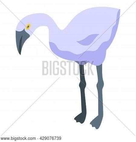 White Fauna Flamingo Icon Isometric Vector. Zoo Bird. Beach Flamingo