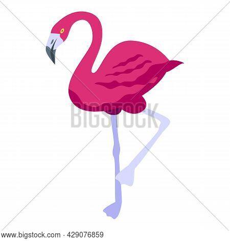 Queen Flamingo Icon Isometric Vector. Zoo Bird. Summer Flamingo