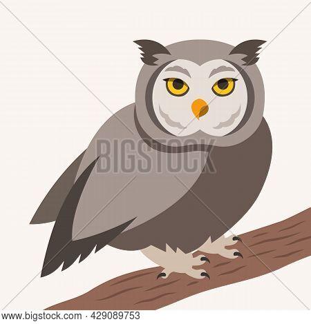 Cute Owl Vector Cartoon Illustration. Wild Forest Bird Sitting On A Tree Branch. Shaggy Adult Predat