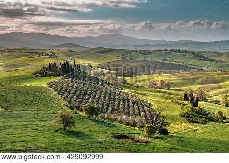 Tuscan Countryside Near San Quirico D'orcia On Foggy Early Morning Sunrise In Tuscany, Italy, April.