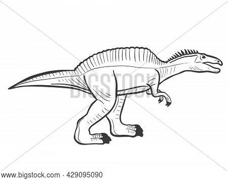 Spinosaurus Sketch Vector Illustration. Prehistoric Extinct Animal Predator. Hand Engraving.