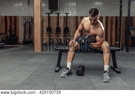 Athletic Man Exercising With Heavy Dumbbell, Concentrated Training Biceps While Sitting On A Bench I