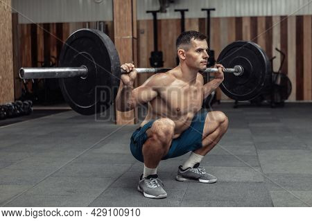 Young Muscular Male Bodybuilder Doing Squats With A Barbell On His Shoulders In A Modern Health Club