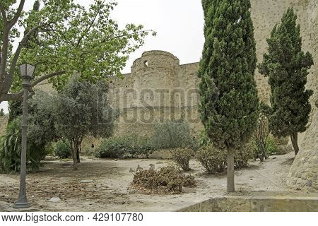 Trees In Front Of The Castillo De Santiago In Sanlucar De Barrameda, Cadiz, Andalusia, Spain