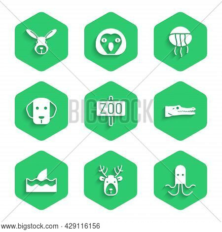 Set Zoo Park, Deer Head With Antlers, Octopus, Crocodile, Shark Fin In Ocean Wave, Dog, Jellyfish An