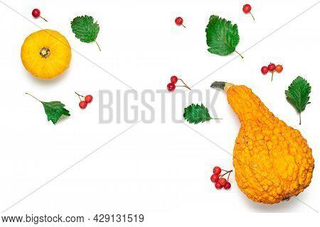 Autumn Leaves Fall. Natural Food, Harvest With Orange Pumpkin, Fall Dried Leaves, Rowan Berries Isol