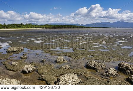 View Of The Mud Flats On Pine Creek Yarrabah , Trinity Inlet View Facing Towards Cairns