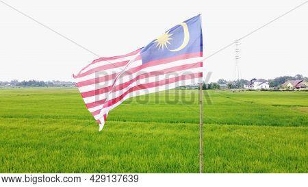 Malaysia, Kuala Terengganu 8 Ogos 2021 : The Malaysian Flag Flies In The Paddy Fields