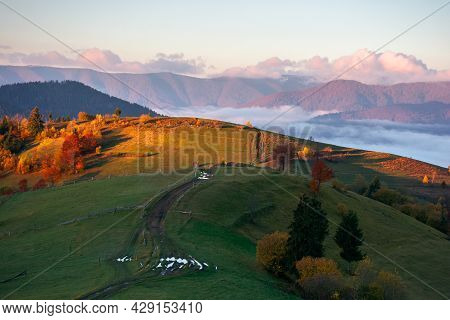Mountainous Rural Landscape At Sunrise. Fields And Pastures On Rolling Hill In Morning Light. Cloud