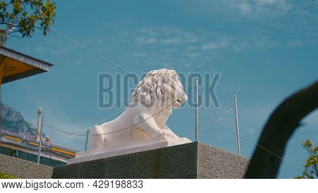 Beautiful Lion Statue On Blue Sky Background. Action. White Naturalistic Monument To Lion On Pedesta