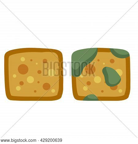 Bread With Mold. Incorrect Storage Of The Product. Fungus And Rot. Sliced Loaf For A Sandwich. Flat