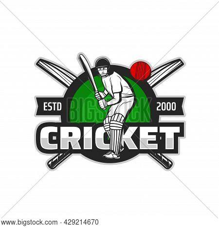 Cricket Sport Player Vector Icon Of Batsman Hitting Ball With Bat, Team Game Uniform Safety Helmet,