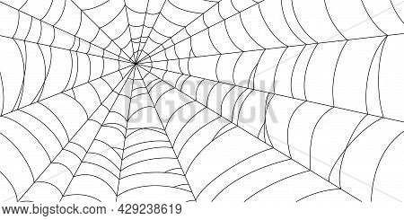 Scary Spider Web. Black Cobweb Silhouette Isolated On White Background. Hand Drawn Banner With Spide