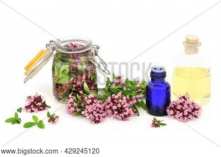 Oregano herb flowers, leaves, loose and steeped in oil with essential oil bottles. Used in natural herbal plant medicine. Eases IBS symptoms, is anti bacterial, anti inflammatory, anti coagulant.