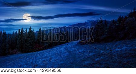 Autumn Scenery With Forest On The Hill At Night. Beautiful Mountain Landscape In Full Moon Light. Cl