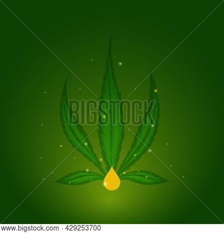 Cannabis Plant Extract For Cbd Oil Production