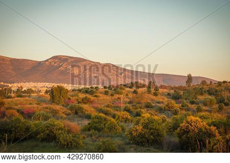 Scenic Sunset View Of Fields And Mountains In Alimos In Athens, Greece