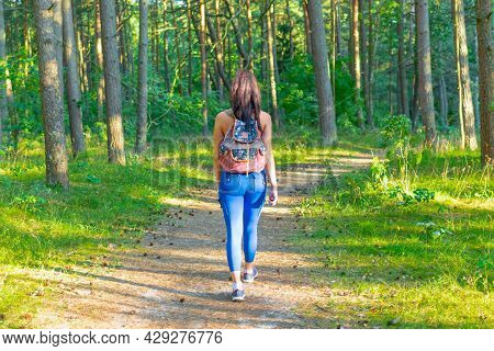 Young Woman Traveler With Backpack Walking In A Summer Forest, Wanderlust Travel Concept,copy Space.