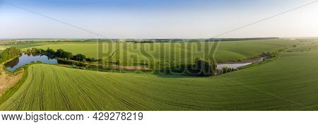 Fields Of Green Unripe Wheat On The Slightly Hilly Slopes Of The Valley With Ponds In Summer Evening
