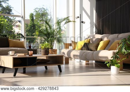 Indoor Terrace Interior With Modern Furniture And Houseplants